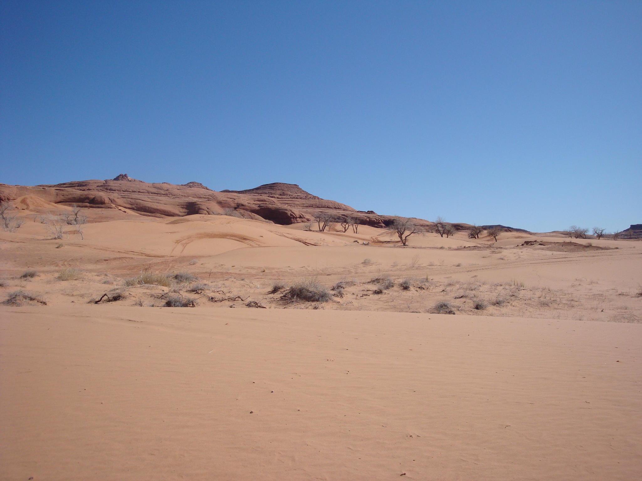 Moab Junky's Adventures-dsc03924.jpg