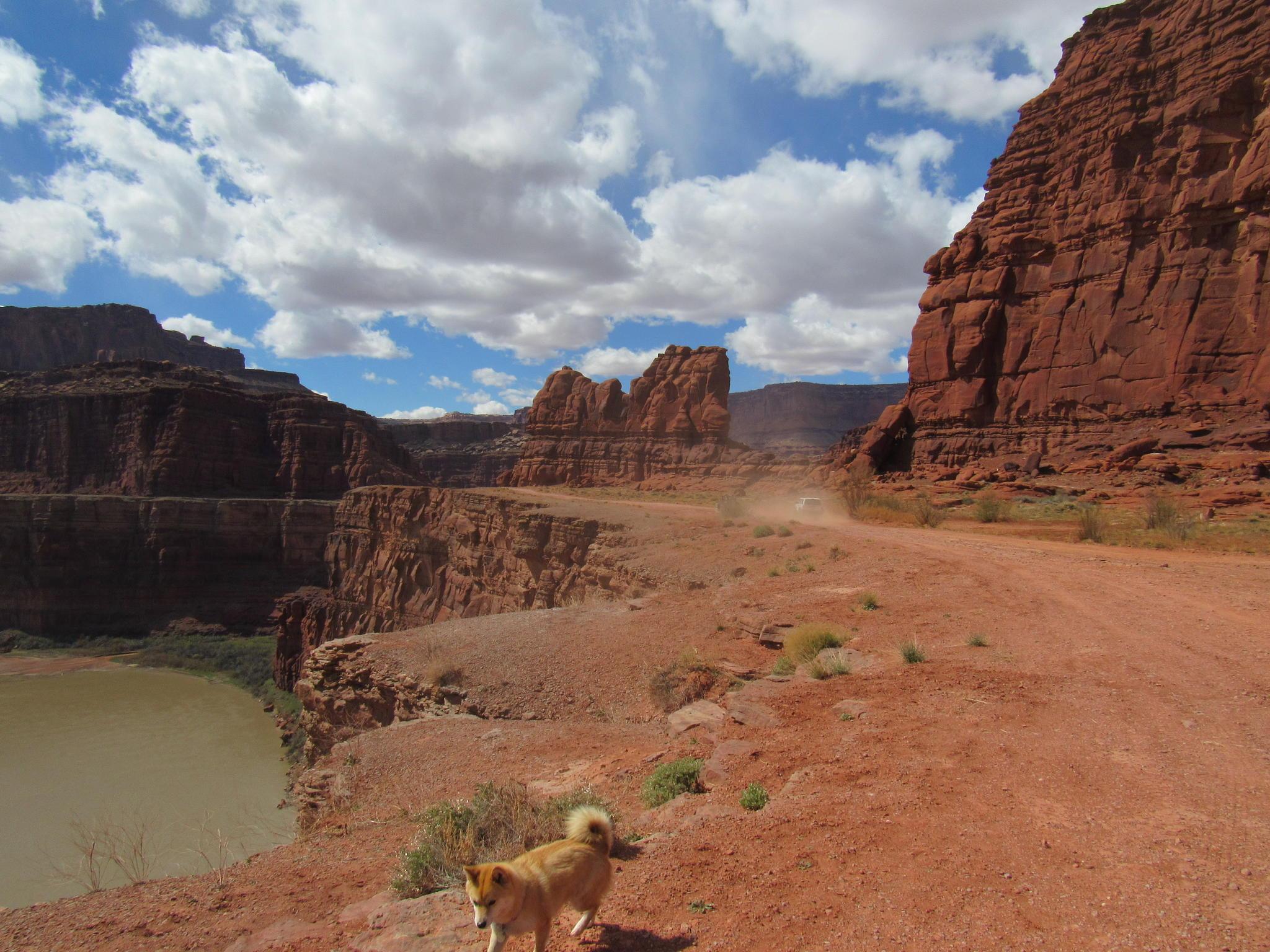 Moab Junky's Adventures-img_0894.jpg