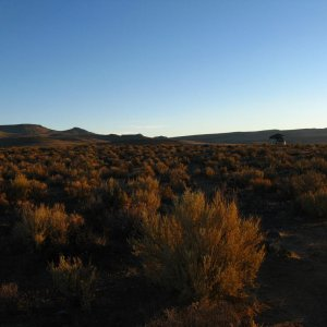 Soldier Meadow, Black Rock Desert, NV